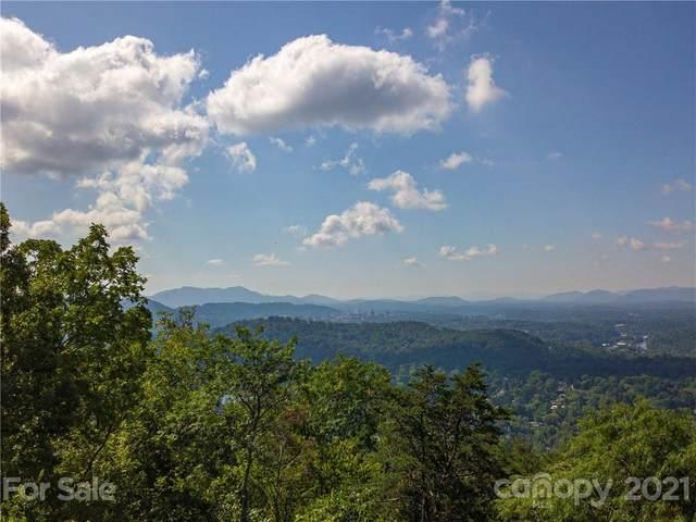 66 Lake Town Lane 259 & 260, Asheville, NC 28804 (#3784723) :: Love Real Estate NC/SC