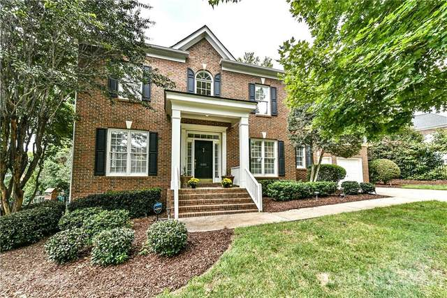 10331 Riesling Court, Charlotte, NC 28277 (#3784843) :: Carlyle Properties