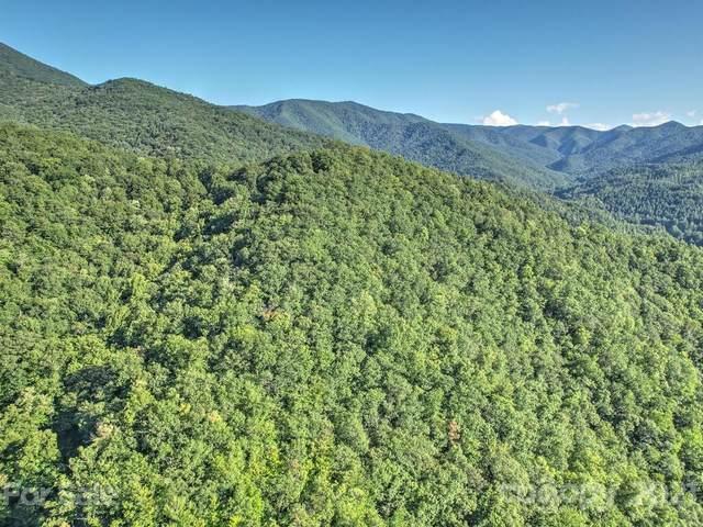 99999 Echo Trail L-2, Canton, NC 28716 (#3785187) :: Keller Williams South Park