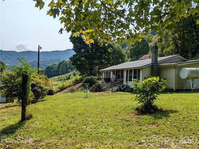 517 Jim Creek Road, Burnsville, NC 28714 (#3785226) :: Carver Pressley, REALTORS®