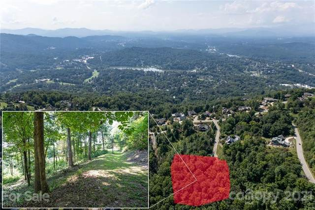 19 Keeping Kyle Crossing, Asheville, NC 28804 (#3785259) :: Love Real Estate NC/SC