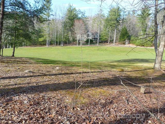 206 Shadybrook Trail #235, Hendersonville, NC 28739 (#3785356) :: Caulder Realty and Land Co.