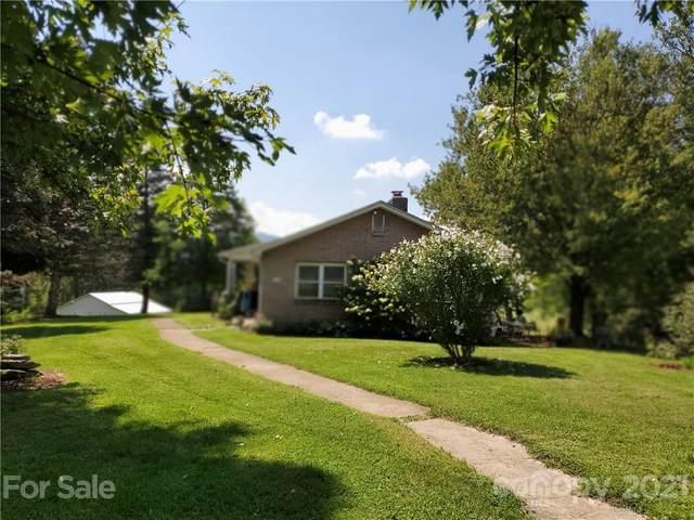 87 Old Oaks Drive, Clyde, NC 28721 (#3785388) :: Home Finder Asheville