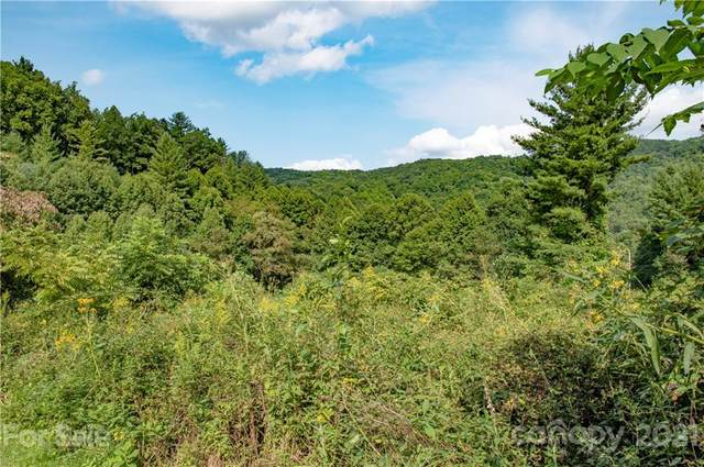 6200-B Meadow Fork Road, Hot Springs, NC 28743 (#3785582) :: Home Finder Asheville
