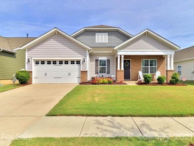 5828 Eleanor Rigby Road, Charlotte, NC 28278 (#3786009) :: High Performance Real Estate Advisors