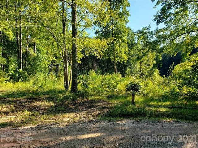 4381 Valley Trail Crossing, Morganton, NC 28655 (#3786014) :: Scarlett Property Group