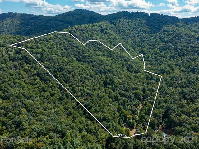 99999 Mundy Cove Road, Weaverville, NC 28787 (MLS #3786273) :: RE/MAX Impact Realty