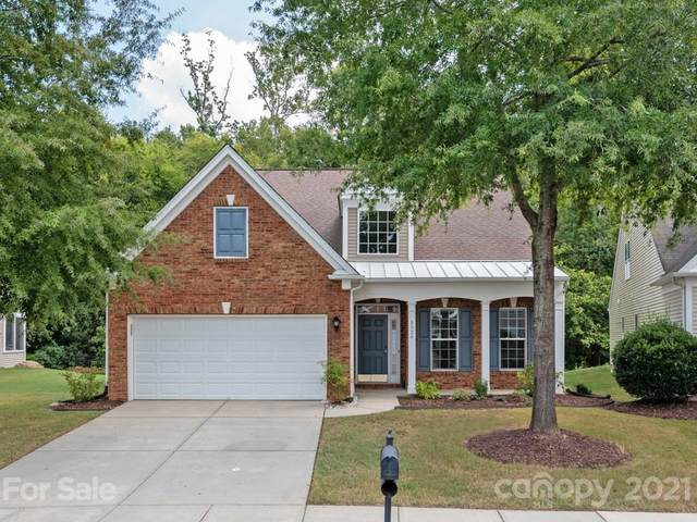 8526 Darcy Hopkins Drive, Charlotte, NC 28277 (#3786648) :: LePage Johnson Realty Group, LLC