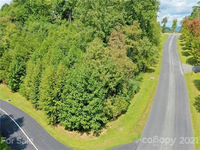 LOT 82 Mountain Elder Lane, Hendersonville, NC 28739 (#3786813) :: Homes Charlotte