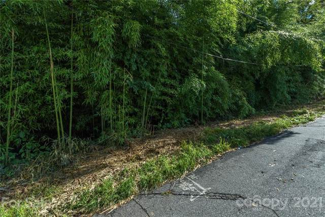 30,34,38 Bellaire Road, Asheville, NC 28806 (#3786942) :: Caulder Realty and Land Co.