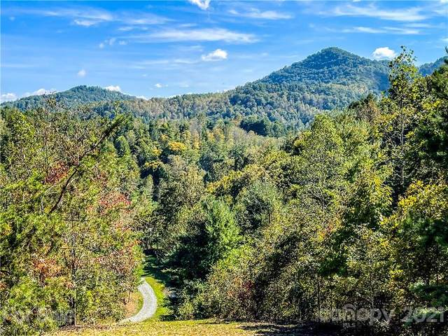 555 Boyd Road #3, Leicester, NC 28748 (#3787098) :: Homes with Keeley | RE/MAX Executive
