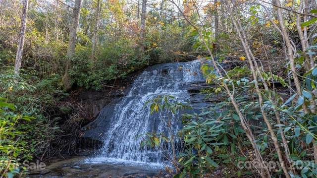 284 Grannies House Road, Zirconia, NC 28790 (#3787206) :: Mossy Oak Properties Land and Luxury