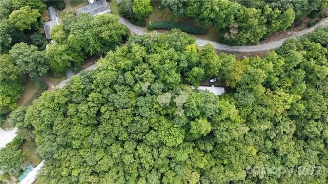 1312 High Peak Road, Hendersonville, NC 28739 (#3787383) :: Besecker Homes Team
