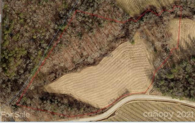 189 Deep Gap Road, Flat Rock, NC 28731 (#3787626) :: Mossy Oak Properties Land and Luxury