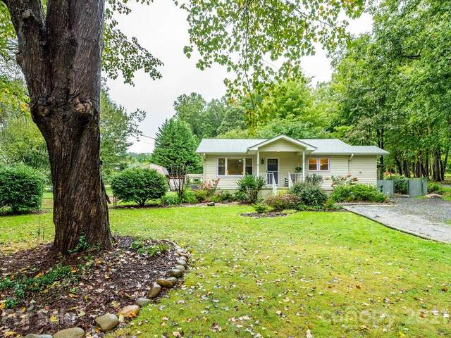 704 Stoney Mountain Road, Hendersonville, NC 28791 (#3787721) :: Homes with Keeley | RE/MAX Executive