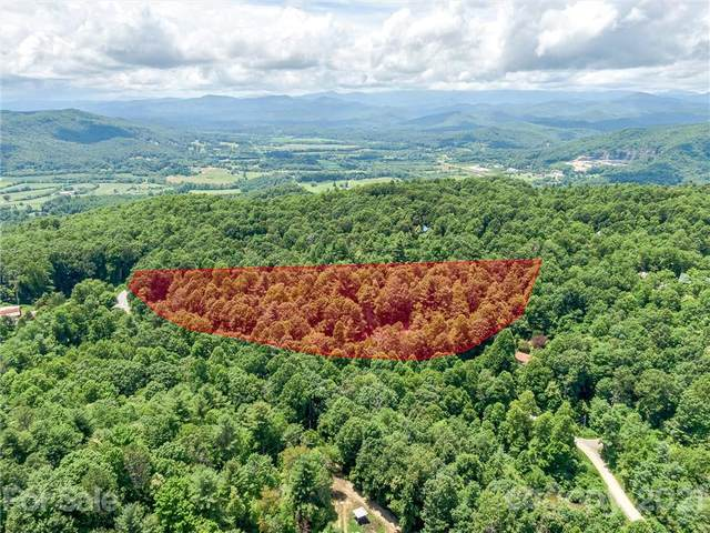 1425 Jeter Mountain Road, Penrose, NC 28766 (#3787824) :: Scarlett Property Group