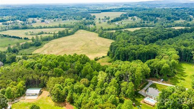000 Musket Drive, Catawba, NC 28609 (#3787887) :: The Snipes Team | Keller Williams Fort Mill