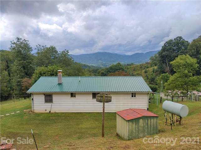 1731 Chambers Mountain Road, Clyde, NC 28721 (#3787905) :: Caulder Realty and Land Co.