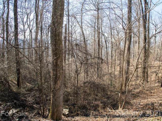 99999 Old Forest Drive 1C, Asheville, NC 28803 (#3787920) :: Love Real Estate NC/SC