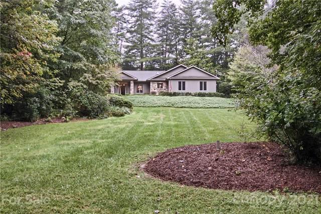 125 Timber Creek Road, Laurel Park, NC 28739 (#3788158) :: DK Professionals