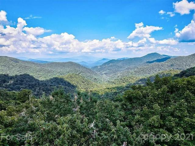 69 Running Cedar Drive 68, 69,91, Mars Hill, NC 28754 (#3788188) :: High Vistas Realty