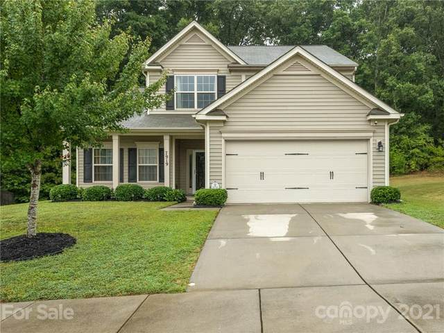 7919 Sweet Grove Court, Charlotte, NC 28269 (#3788249) :: LePage Johnson Realty Group, LLC
