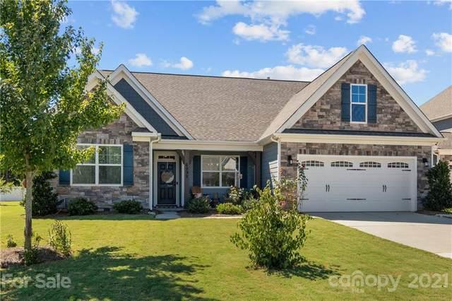 6992 Adirondack Drive, Denver, NC 28037 (#3788326) :: Besecker Homes Team