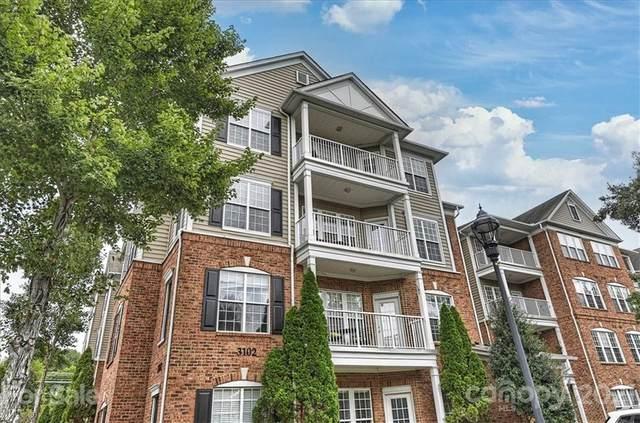 3146 Margellina Drive, Charlotte, NC 28210 (#3788394) :: Rhonda Wood Realty Group
