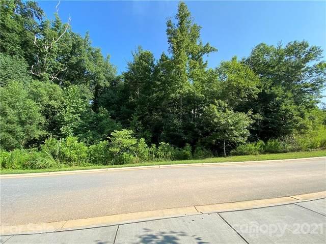 58 Versailles Lane #27, Asheville, NC 28804 (#3788460) :: Besecker Homes Team