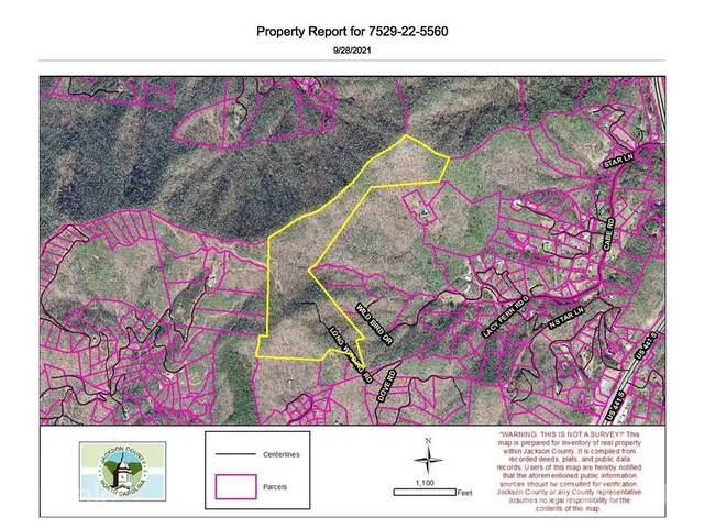 0 Long Winding Road, Sylva, NC 28779 (#3788467) :: Mossy Oak Properties Land and Luxury