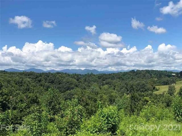 68 Sweet Fern Parkway #50, Asheville, NC 28804 (#3788599) :: Austin Barnett Realty, LLC
