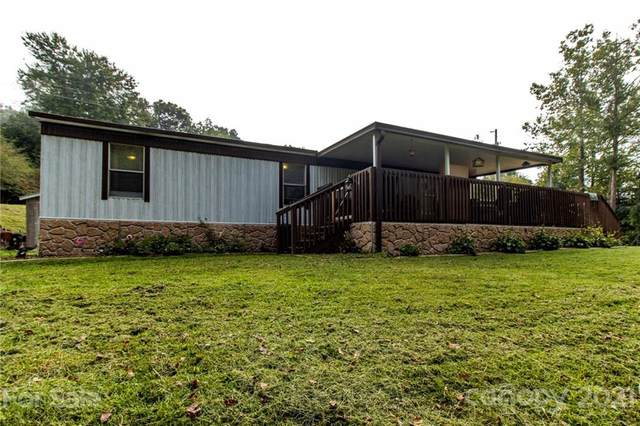 6223 Crabtree Road, Clyde, NC 28721 (#3789010) :: Rhonda Wood Realty Group