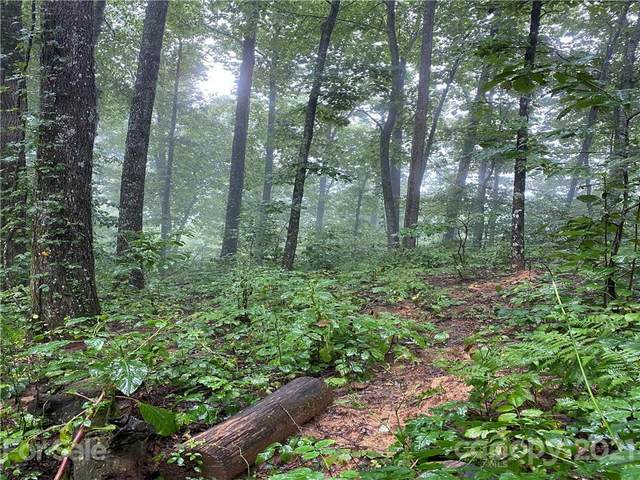 Lot 232 Crossvine Drive, Tuckasegee, NC 28783 (#3789085) :: Homes with Keeley | RE/MAX Executive