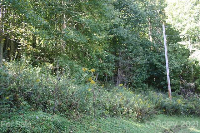 9 Haw View Drive #9, Mars Hill, NC 28754 (#3789126) :: Mossy Oak Properties Land and Luxury