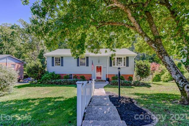 1200 Pinebrook Circle, Hendersonville, NC 28739 (#3789225) :: Homes with Keeley | RE/MAX Executive