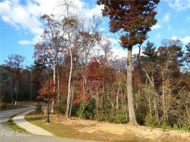 tbd Springhouse Trail #5, Brevard, NC 28712 (#3789258) :: High Vistas Realty