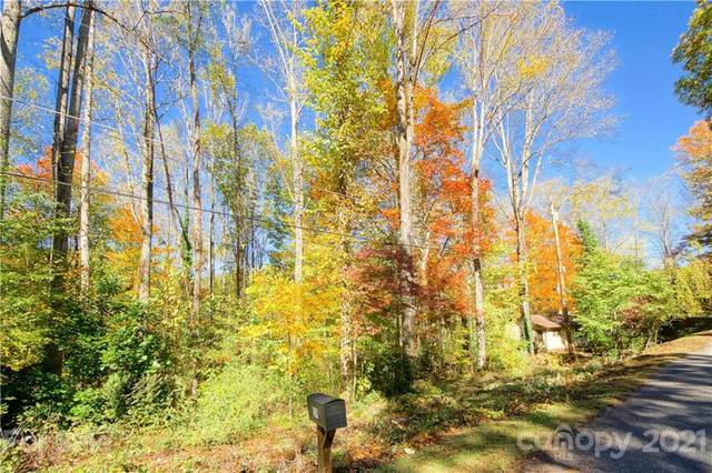 TBD Ash Drive #14, Maggie Valley, NC 28751 (#3789562) :: The Mitchell Team