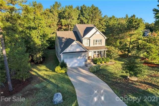 6606 Buck Horn Place, Waxhaw, NC 28173 (#3789653) :: LePage Johnson Realty Group, LLC