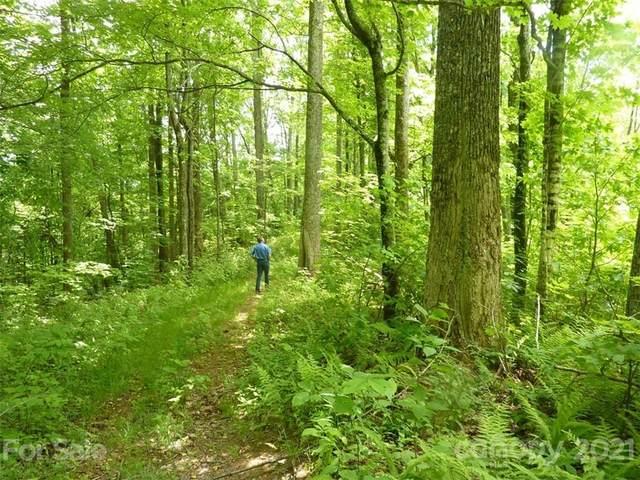 TBD Running Bear Road, Hot Springs, NC 28743 (#3789828) :: Mossy Oak Properties Land and Luxury