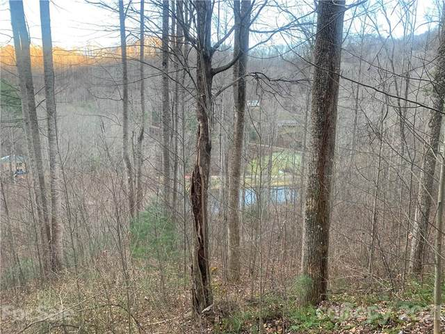 000 Rugged Top Road R 17, Waynesville, NC 28751 (#3789842) :: The Mitchell Team