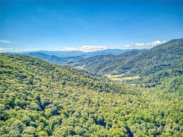 5 Mount Soma Boulevard #103, Clyde, NC 28721 (#3790234) :: Home and Key Realty