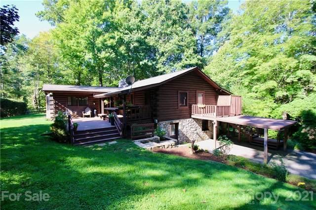 288 Maple Grove Church Road, Waynesville, NC 28786 (#3790407) :: Homes Charlotte