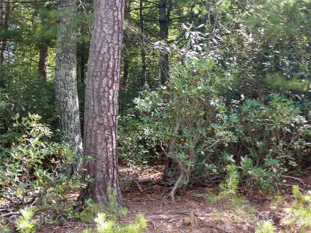 00 James View Road #23, Marion, NC 28752 (#3790722) :: Mossy Oak Properties Land and Luxury