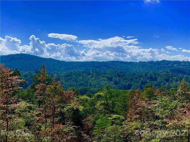 Lot w9 Curtain Bluff, Hendersonville, NC 28791 (#3790759) :: High Vistas Realty