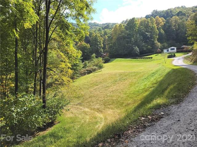 3 Seay Mountain Road #3, Waynesville, NC 28785 (#3790827) :: Mossy Oak Properties Land and Luxury