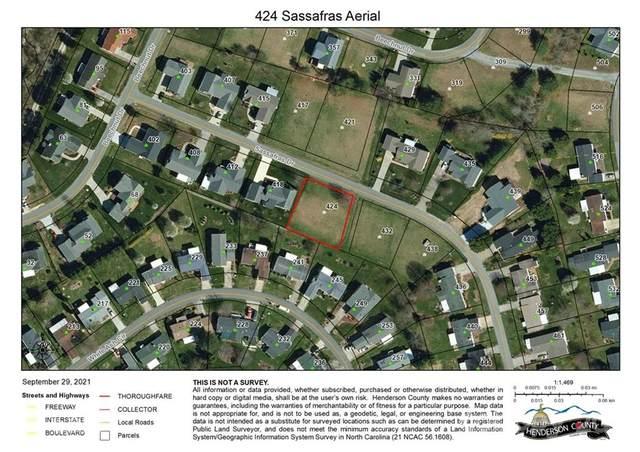 424 Sassafras Drive #42, Hendersonville, NC 28739 (#3791266) :: Briggs American Homes