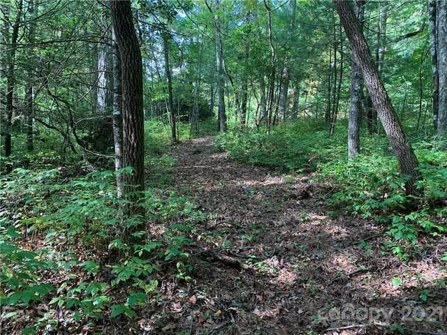 TBD Green Hollow Lane, Brevard, NC 28712 (#3791712) :: High Vistas Realty