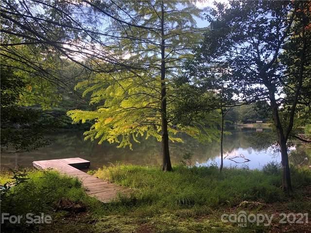 160 Grouse Lane, Brevard, NC 28712 (#3791797) :: High Vistas Realty