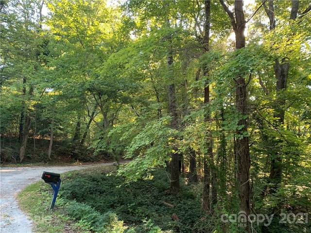 000 Wilderness Road, Tryon, NC 28782 (#3791866) :: Robert Greene Real Estate, Inc.