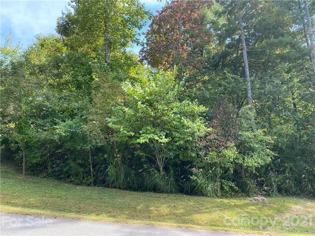 3 Magnolia View Trail #28, Asheville, NC 28804 (#3791974) :: Mossy Oak Properties Land and Luxury